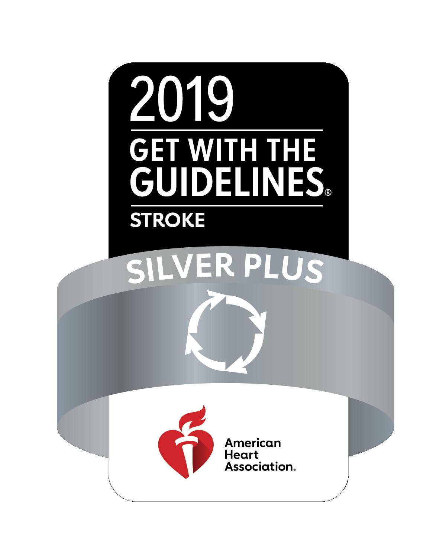 2019 Stroke Silver Plus AHA