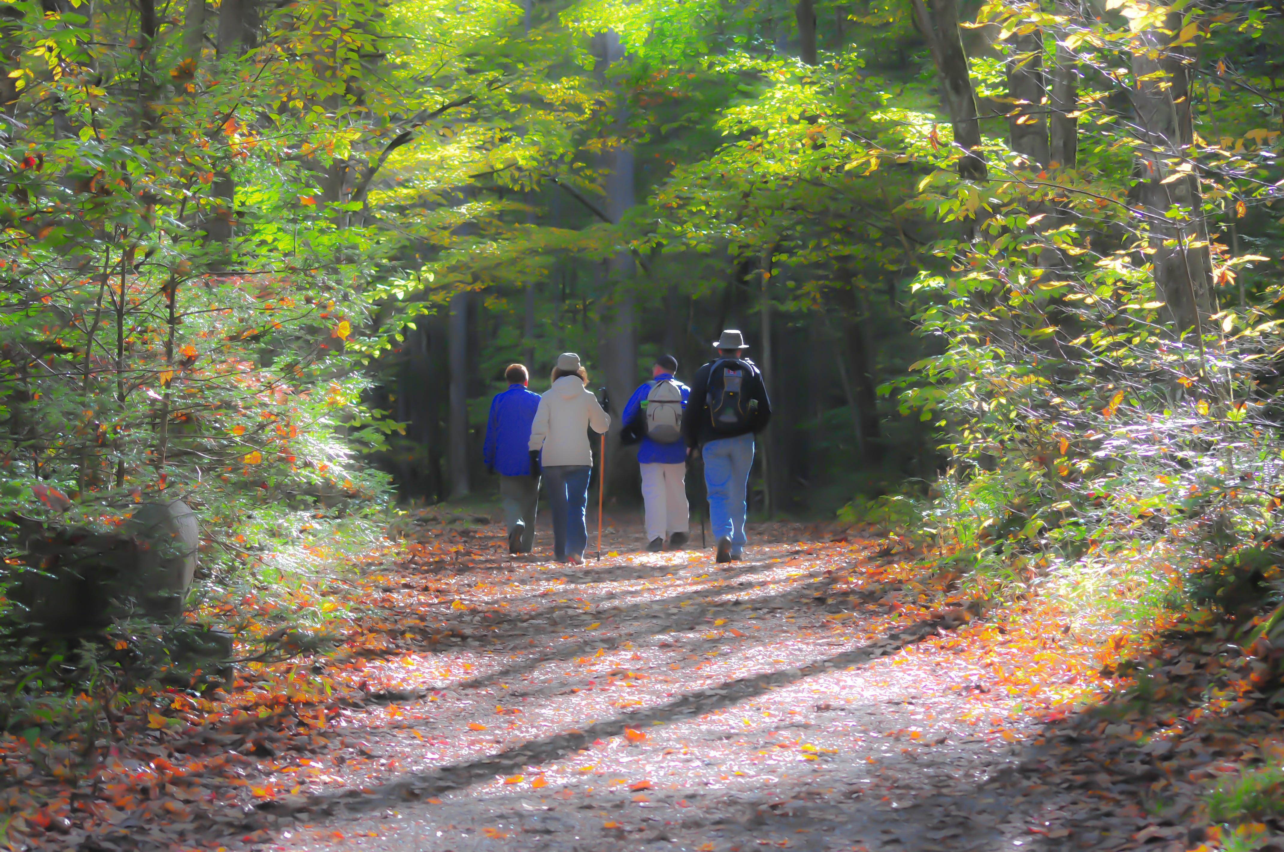 People hiking